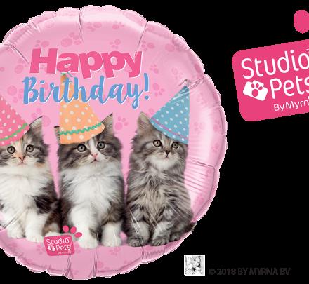 57623 Birthday Kittens mylar balloon